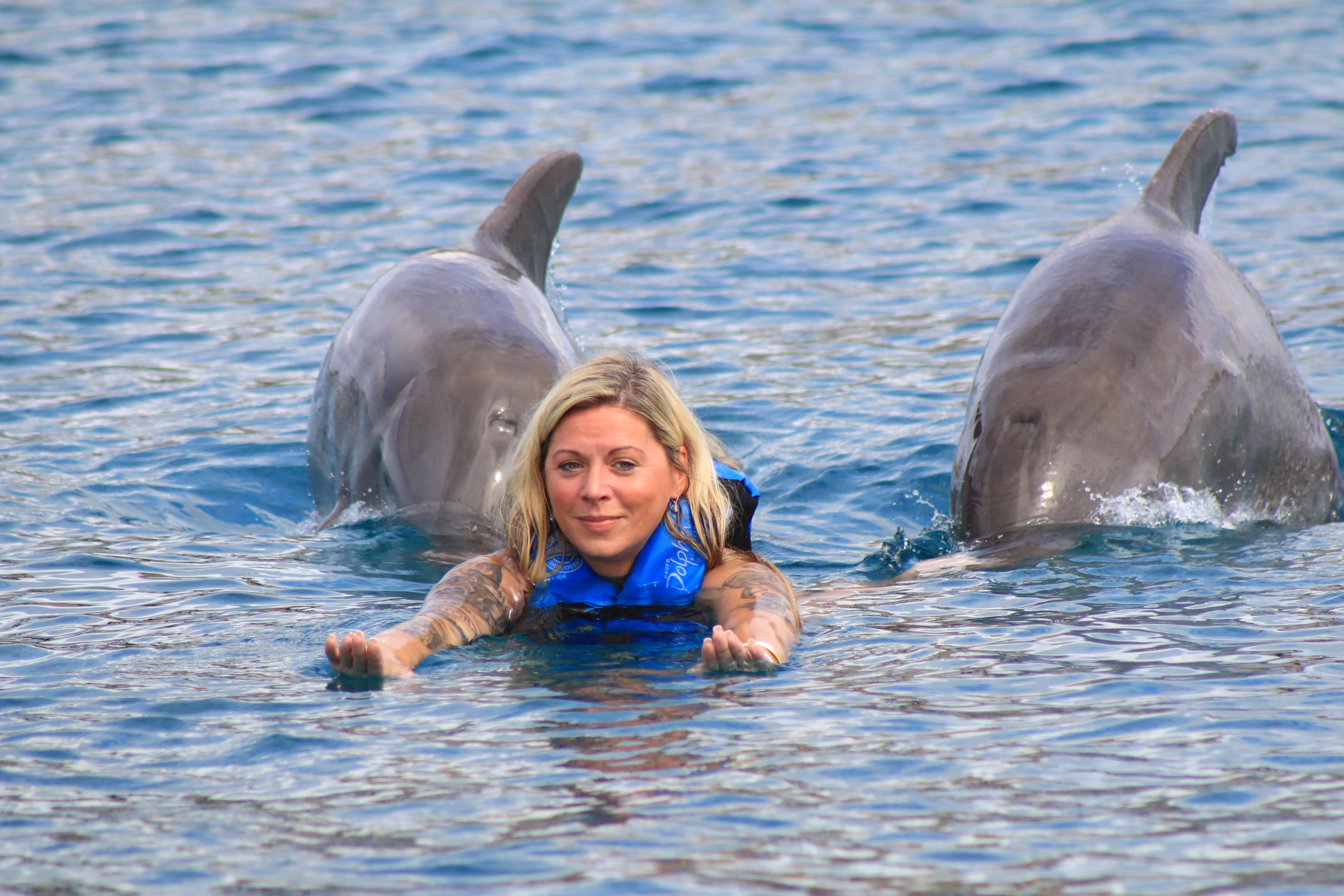Swimming with dolphins... check!