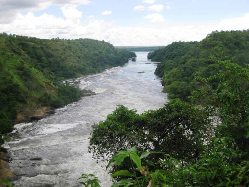 View of the Nile from atop Murchison Falls, Uganda