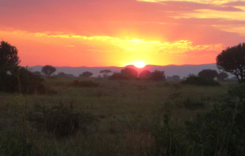 Sunrise on the African savanna