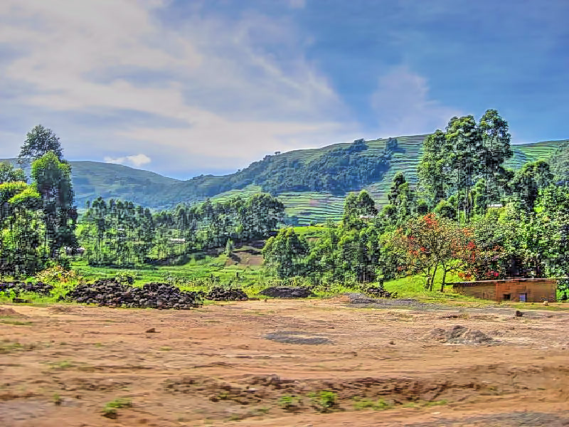 Rice terraces and giant road craters
